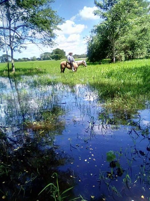 Inundaciones en territorio chontal