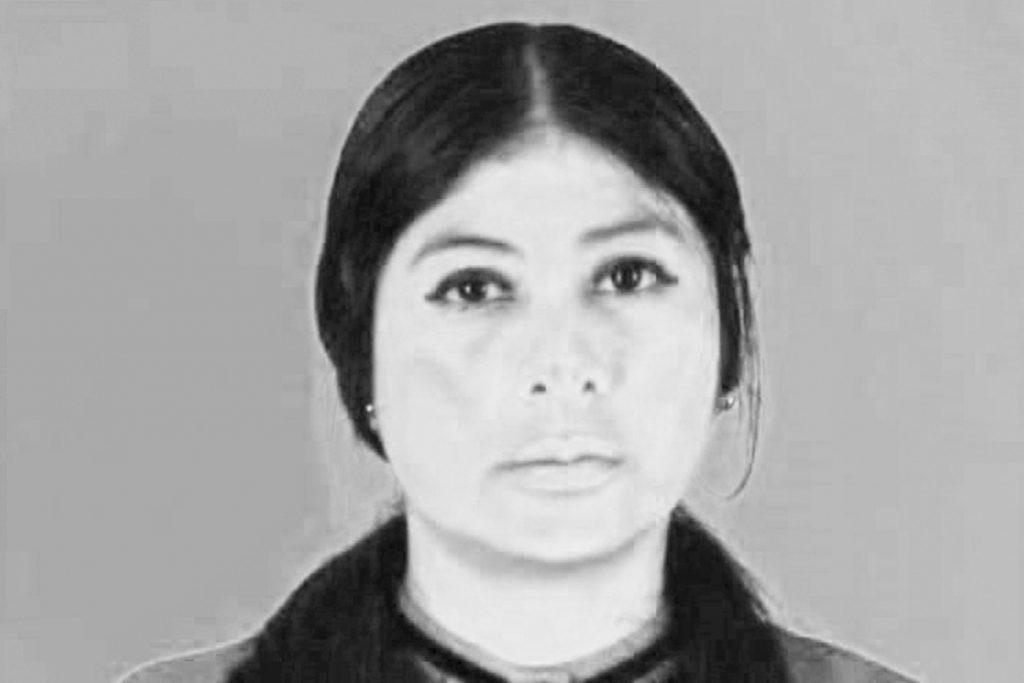 Perla Damián, Veracruz, Consulta Popular